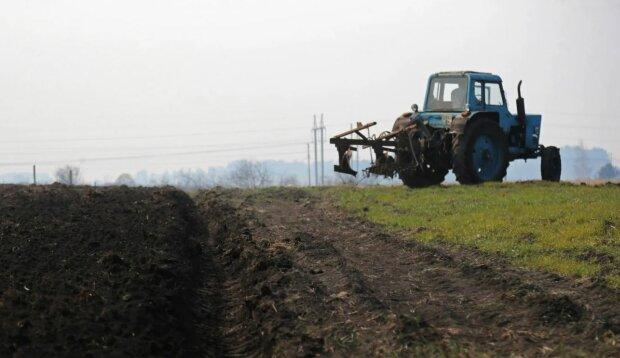 Потрібно купити або оформити оренду: українцям розповіли, що зроблять із земельними ділянками після нового закону