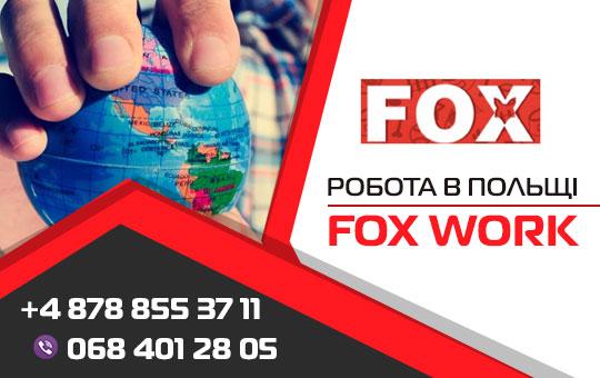 Робота в Польщі – Fox Work