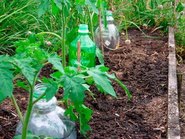 Відмінне пристосування для повільного крапельного поливу з пластикової пляшки